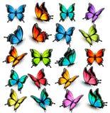 Sammlung bunte Schmetterlinge Stockbilder