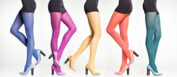 Sammlung bunte Strümpfe auf sexy Frauenbeinen auf Grau Lizenzfreies Stockbild