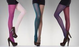 Sammlung bunte Strümpfe auf sexy Frauenbeinen auf Grau Lizenzfreies Stockfoto
