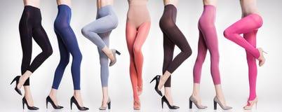 Sammlung bunte Strumpfhosen und Strümpfe auf sexy Frauenbeinen lizenzfreies stockbild