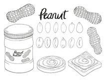 Sammlung der Handgezogenen Erdnuss, Brot stock abbildung