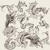 Sammlung der Vektorweinlese wirbelt für Design Lizenzfreie Stockbilder