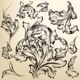 Sammlung der Vektorweinlese wirbelt für Entwurf Stockbild