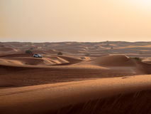 Sammlung der Wüsten-4x4 Lizenzfreie Stockbilder