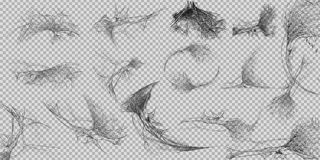 Sammlung des Spinnennetzes, lokalisiert auf weißem, transparentem Hintergrund Spiderweb für Halloween-Design Spinnennetzelemente, Lizenzfreies Stockbild