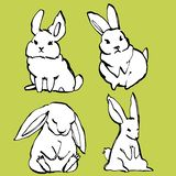 Sammlung etwas netter Kaninchen, Illustration des Handabgehobenen betrages Vektorillustrationssatz-Charakterentwurf des abgehoben stock abbildung