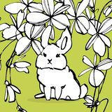 Sammlung etwas netter Kaninchen, Illustration des Handabgehobenen betrages Vektorillustrationssatz-Charakterentwurf des abgehoben lizenzfreie abbildung
