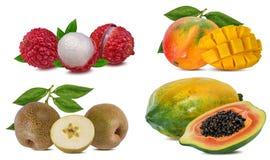 Sammlung exotische Früchte lokalisiert auf einem Weiß lizenzfreies stockbild