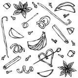 Sammlung Gewürze und Frucht-Scheiben Anis, Zimt, Nelke, Vanille, Apple, orange Schale Hand gezeichnete Skizzenvektorillustration Stockfotos