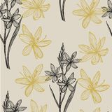 Sammlung Hand gezeichnete Blumen und Anlagen botanik set Universalschablone f?r Gru?karte, Webseite, Hintergrund Schwarzweißabbil stock abbildung