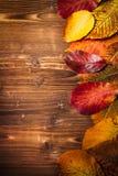 Sammlung Herbstlaub auf hölzernem Hintergrund Stockbild