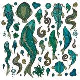 Sammlung Meeresfische und Geschöpfe Vektor Abbildung