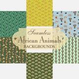 Sammlung nahtlose Hintergründe auf dem Thema des afrikanischen Anima Lizenzfreies Stockbild
