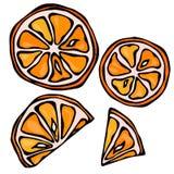 Sammlung orange Scheiben, lokalisiert auf weißem Hintergrund, Gekritzel-Art-Vektor-Illustration Lizenzfreie Stockfotografie