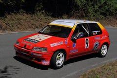Sammlung Peugeots 106 Stockbild