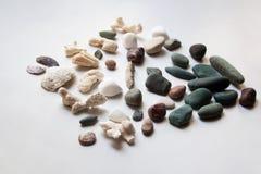 Sammlung Seesteine, -oberteile und -korallen lizenzfreie stockbilder