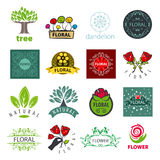 Sammlung Vektorlogos der Blume und des Gemüses Stockfoto