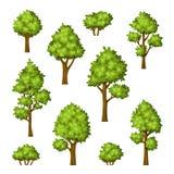 Sammlung verschiedene Bäume und Büsche vektor abbildung