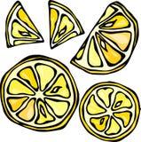 Sammlung Zitronen, lokalisiert auf weißem Hintergrund, Gekritzel-Art-Vektor-Illustration Lizenzfreies Stockbild