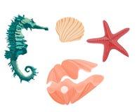 Sammlungsmeeresflora und -fauna Seahorse Starfish und seash Lizenzfreies Stockbild