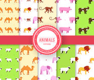 Sammlungssatz des tierischen nahtlosen Musters Löwe, Affe, Affe, Kamel, Elefant, Kuh, Schwein, Schaf mit Aufkleberlogo Stockfoto