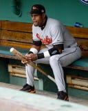 Sammy Sosa, Baltimore Orioles Stock Image
