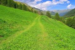 Samnaun Alps Royalty Free Stock Photo