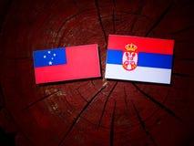 Samoa flag with Serbian flag on a tree stump isolated. Samoa flag with Serbian flag on a tree stump royalty free stock image