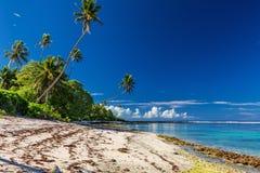 Samoa strand med palmträd under lågvatten, södra sida av Upolu Royaltyfri Foto
