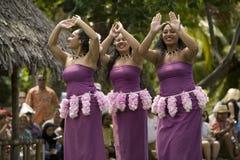Samoaischer Tänzer 1553 Lizenzfreies Stockbild