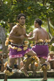 Samoaischer Tänzer 1578 stockfotografie