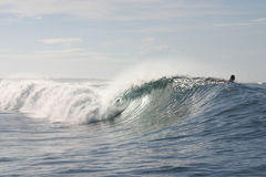Samoaisches Faß Lizenzfreie Stockbilder