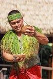 A Samoan man demonstrating water inside a coconut. Honolulu, Hawaii - May 27, 2016:A Samoan man demonstrating water inside a coconut in the village of Samoa at stock photos