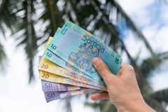 Samoan Tala currency - right hand holding bank notes from Western Samoa with palm trees in background. Samoan Tala currency WST - right hand holding colorful royalty free stock photography