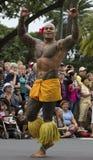 Samoan warrior. Event: 2012 Honolulu Festival Location: Honolulu, on the island of O'ahu, Hawai'i, USA 04.III.12 Subject: A traditionally tattooed Samoan warrior royalty free stock image