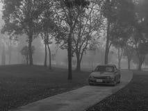 Samochód gubi w dżungli Zdjęcia Stock