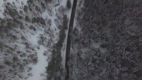 Samochód i ciężarówka poruszający na zimy drodze przez śnieżnego lasowego widok z lotu ptaka zbiory