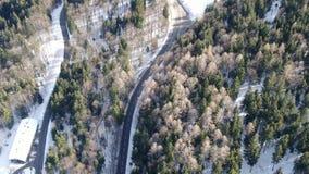 Samochód jedzie na drodze przez lasu z śniegiem, słoneczny dzień, 4k zbiory