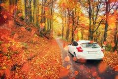 Samochód na lasowej ścieżce drogowe piękne góry _ Obrazy Stock