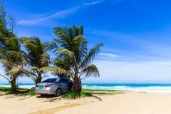 Samochód pod drzewkiem palmowym na plaży Obrazy Royalty Free
