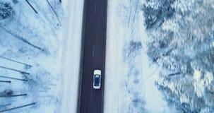 Samochód przejażdżki na zimy drodze Zimy droga, drzewa i krzaki zakrywający z śniegiem, zdjęcie wideo