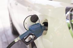 Samochód tankuje z benzyną przy benzynową stacją Zdjęcia Royalty Free