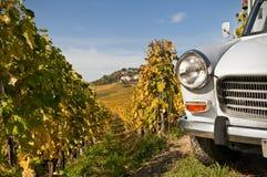 Samochód w Lavaux obrazy stock