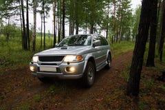 Samochód w lesie Zdjęcia Stock