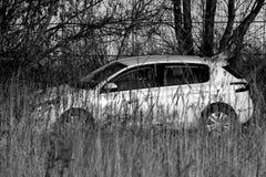 Samochód w polu trawa Zdjęcie Royalty Free