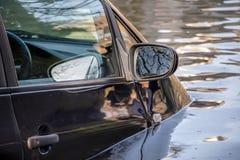 Samochód zanurzający w wodzie powodziowej fotografia royalty free