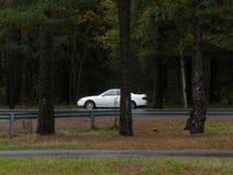 Samochód zatrzymujący w drewnach fotografia stock