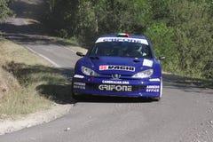 206 samochodów Peugeot zlotny wrc Obraz Stock
