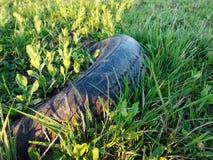 Samochodowa opona rzucająca w trawę zdjęcie stock