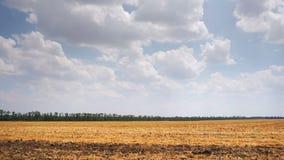 Samochodowy bocznego okno widoku jeżdżenie wokoło płaskiej krajobrazowej wsi Rolnictwo zbiory wideo
